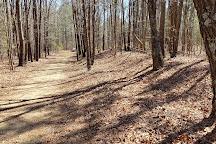 White Oak Road Battlefield, Petersburg, United States