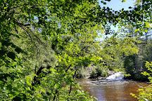 12 Foot Falls County Park, Dunbar, United States