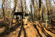Polonezkoy Hayvanat Bahcesi ve Dogal Yasam ParkI (Polonezkoy Zoo), Istanbul, Turkey