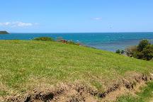 Canons du Ouen Toro, Noumea, New Caledonia