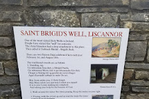 St. Brigid's Well, County Clare, Ireland
