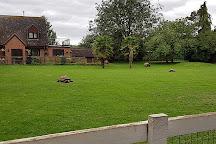 Linton Zoo, Linton, United Kingdom