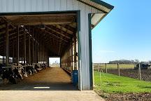 Hinchley's Dairy Farm Tours, Cambridge, United States