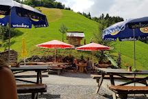 Fussgaenger-Hangebruecke, Frutigen, Switzerland
