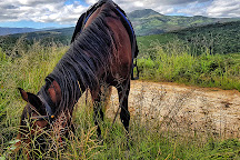 Black Horse Trails, Wilderness, South Africa