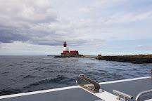 Farne Islands, Northumberland, United Kingdom