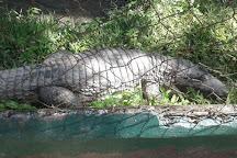 The Guyana National Zoo, Georgetown, Guyana