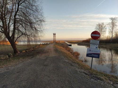 Tarvastu Poldri vaatetorn; Tarvastu sadam