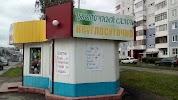 Цветы Игрушки АЙСЕЛЬ., Взлетная улица, дом 47 на фото Барнаула
