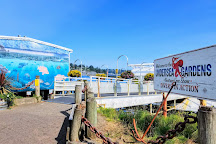 Oregon Undersea Gardens, Newport, United States