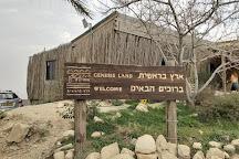 Genesis Land, Alon, Palestinian Territories