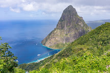 Tet Paul Nature Trail, Soufriere, St. Lucia