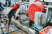 Bird Garden Yuanpu Street, Hong Kong, China