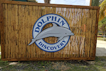 Dolphin Discovery Tortola, Road Town, British Virgin Islands