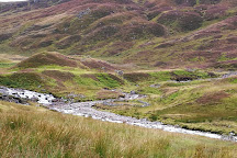 Ben Lawers National Nature Reserve, Lawers, United Kingdom