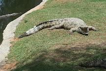 Makopa Reptile Park, Gauteng, South Africa