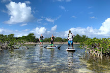 Rising Tide Tours, Providenciales, Turks and Caicos