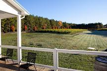 Thistle Gate Vineyards, Scottsville, United States
