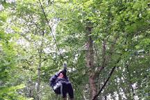 Zipit Forest Adventures, Boyle, Ireland