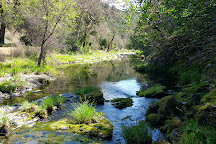 Henry W. Coe State Park, Morgan Hill, United States