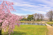 Kiyose Kanayama Ryokuchi Park, Kiyose, Japan