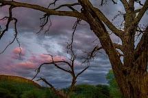 Waterburg Plateau Park, Otjozondjupa Region, Namibia