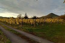 Borbely Csaladi Pinceszet, Badacsonytomaj, Hungary
