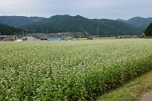 Satoyama Experience, Takayama, Japan
