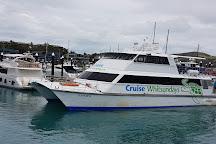 Hamilton Island Marina, Hamilton Island, Australia