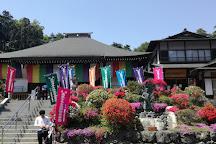 Shiofune Kannon Temple, Ome, Japan