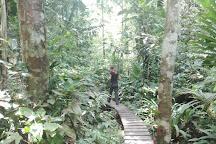 Reserva Natural Tanimboca, Leticia, Colombia