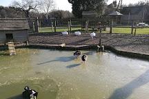 Blackberry Farm, Lewes, United Kingdom