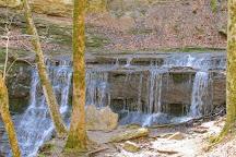 Jackson Falls, Williamsport, United States