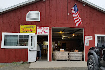 Ritter's Cider Mill, Mt Cobb, United States