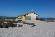 Baja Ecotours, San Ignacio, Mexico