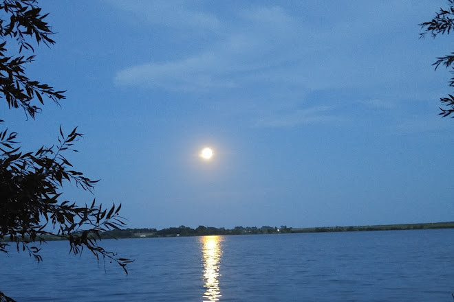 Lake Hoskins, Ashley, United States