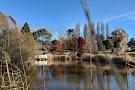 The Oberon Common