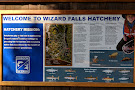 Wizard Falls Fish Hatchery
