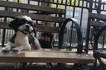 Hell's Kitchen & Clinton Dog Run, New York City, United States
