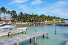 The Estuary of Caye Caulker