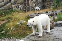 Rostock Zoo, Rostock, Germany