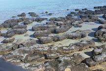 Hamelin Pool Stromatolites, Denham, Australia