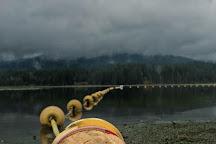 Whonnock Lake, Maple Ridge, Canada