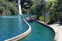 Rainbow Springs Nature Park, Rotorua, New Zealand