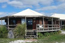Pukorokoro Miranda Shorebird Centre, Miranda, New Zealand