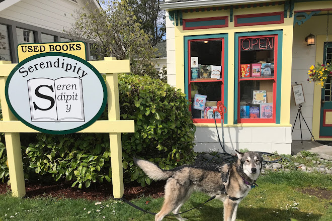 Visit Serendipity The Used Book Place On Your Trip To Friday