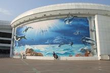 Beijing Aquarium (Beijing Haiyangguan), Beijing, China
