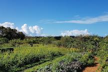 Eleuthera Island Farm, Eleuthera, Bahamas