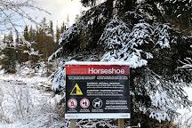 Horseshoe Lake, Jasper National Park, Canada