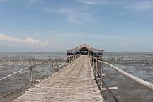 Ekowisata Mangrove Wonorejo, Surabaya, Indonesia